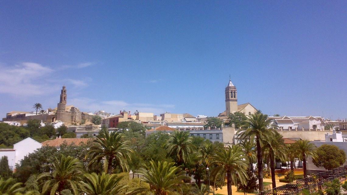 aceite de oliva virgen del corazón de Andalucía
