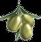 Aceite de oliva virgen artesanal de Molino Los Pérez | Aceite de oliva virgen de Andalucía